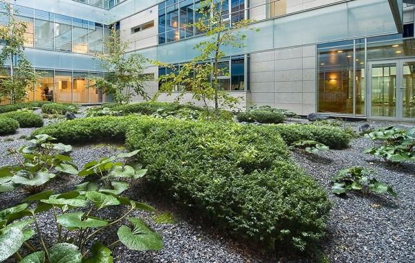 Mantenimiento de jardines especializado